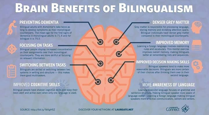 benefits to being multilingual Here are a few firsthand accounts we gathered from multilinguals that help explain the daily benefits of being able to speak multiple languages  6 multilingual benefits that you only get if.